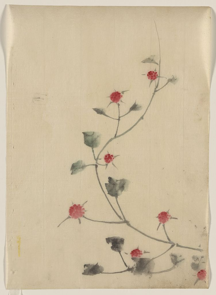Small Red Blossoms on a Vine, 1830 — Katsushika Hokusai