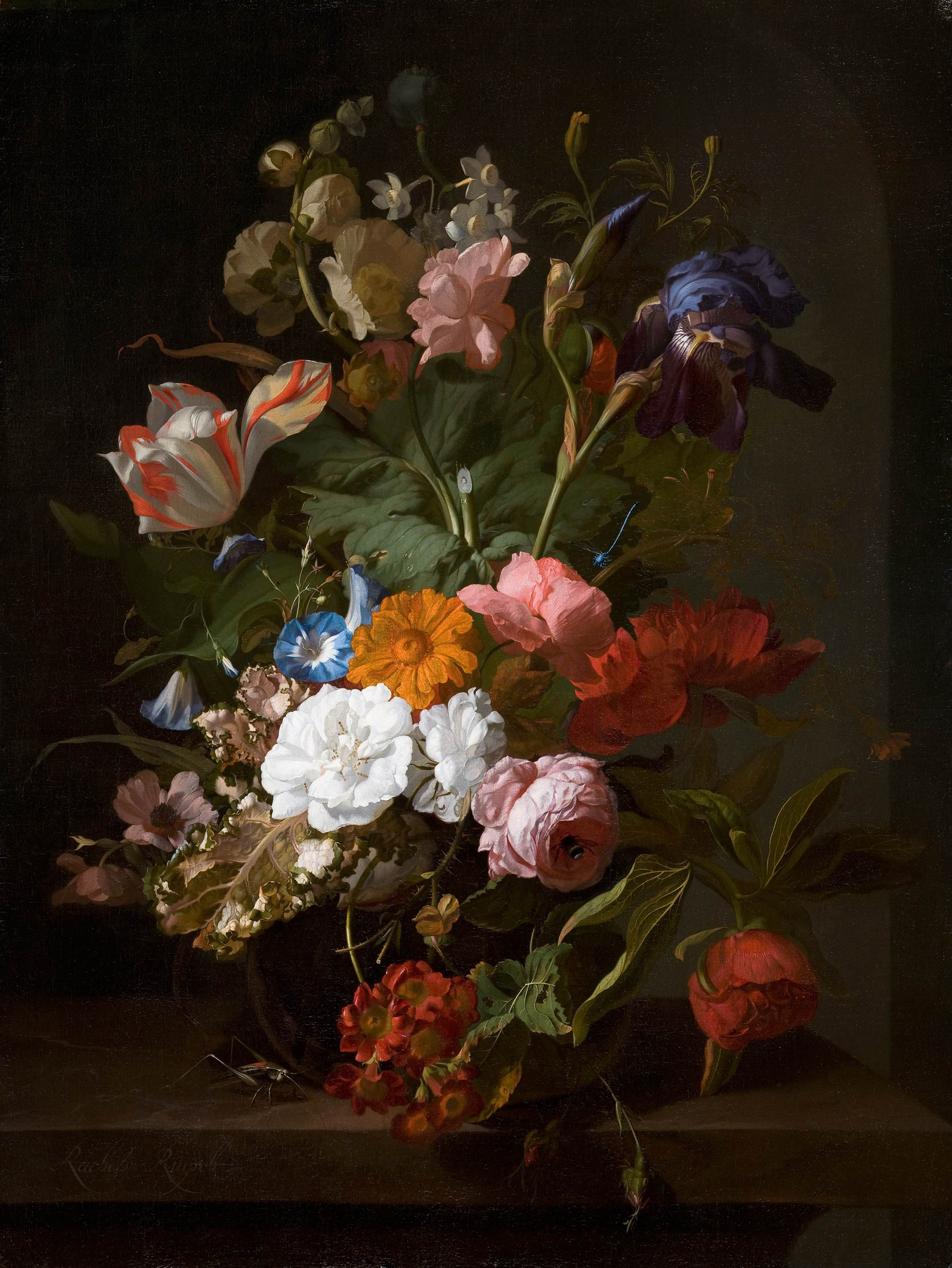 Still Life with Flowers and a Cricket, 1700 — Rachel Ruysch,
