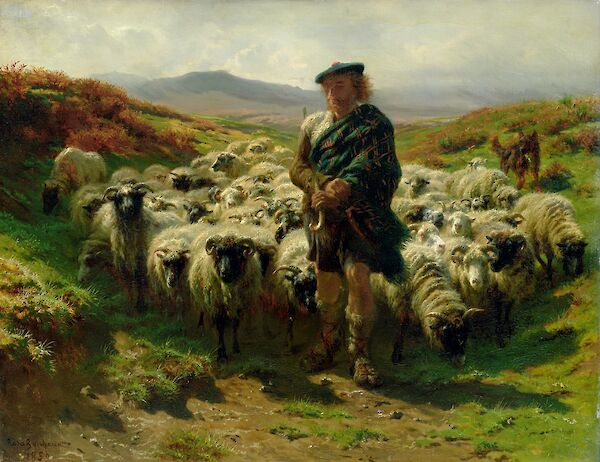 The Highland Shepherd