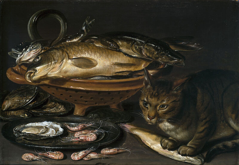 Still Life of Fish and Cat, 1620, Clara Peeters