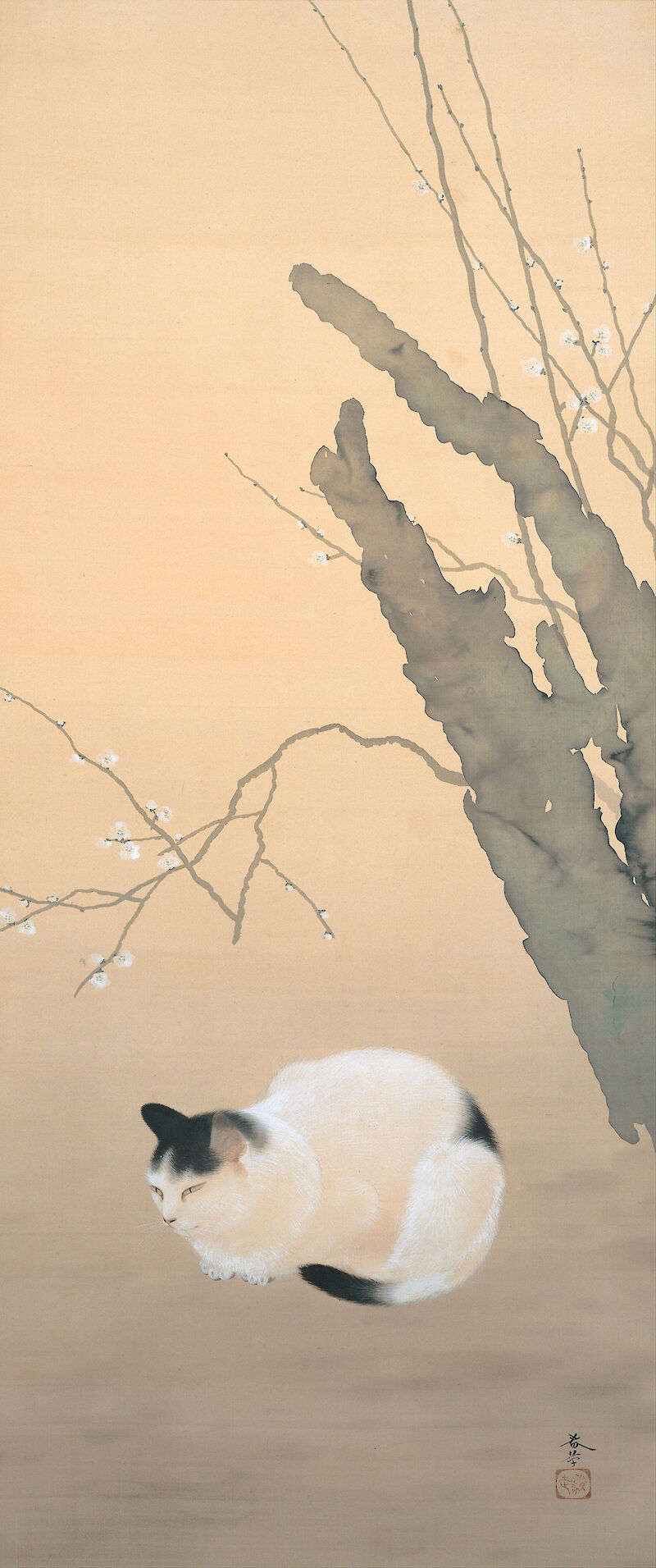 Cat and Plum Blossoms, 猫梅