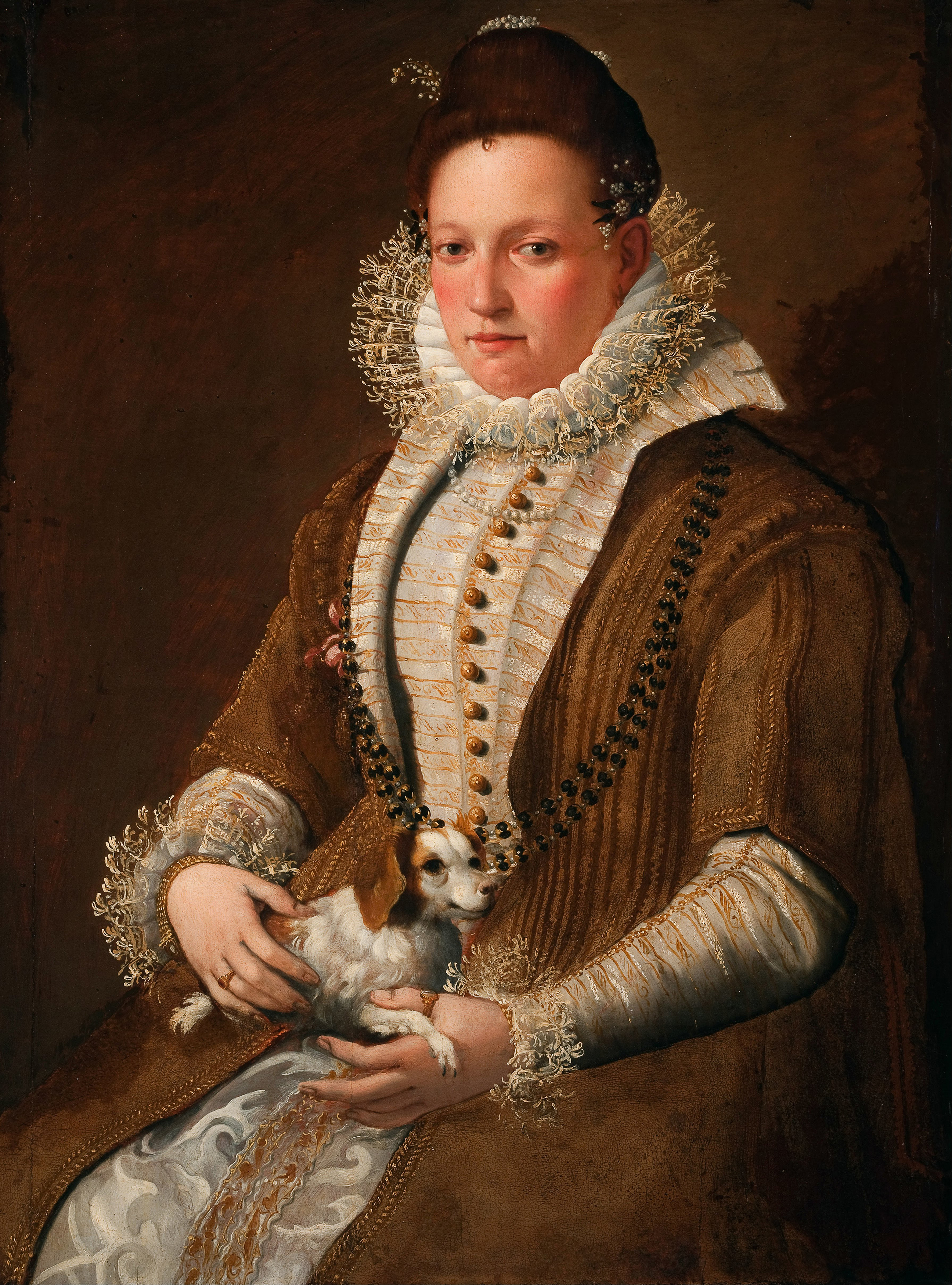 Portrait of a Lady with a Dog, 1600 — Lavinia Fontana,